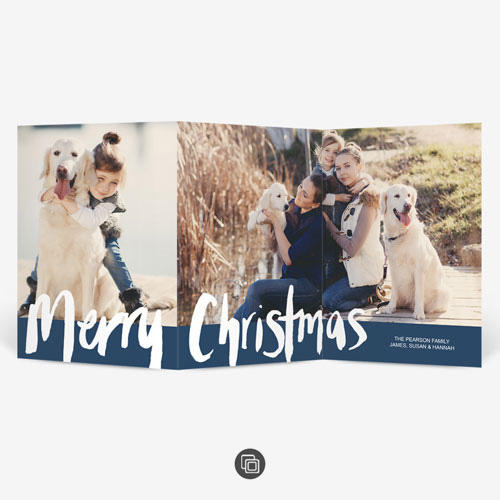 Merry Christmas & Pets Card